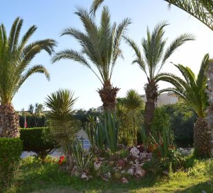 Gartenanlage Hotel El Mouradi Palm Marina