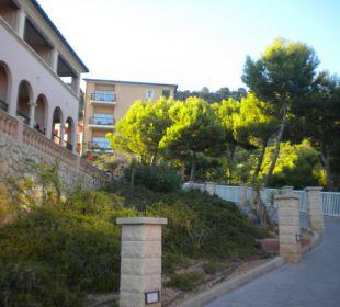 Hausblöcke Hotel Don Antonio