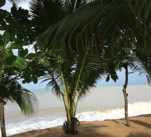 Strand La Flora Resort & Spa