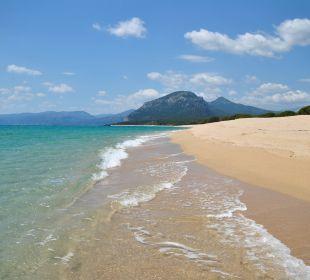 Um die Ecke: Naturreservart Su Barone Holiday Residence Rifugio