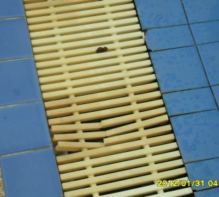 Defekte Abdeckung Hotel Pattaya Garden