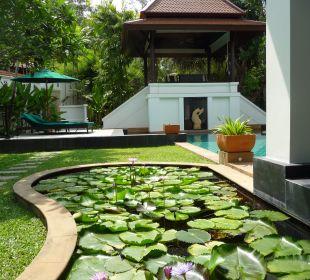 Pool Hotel Banyan Tree Phuket