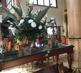 Sonstiges IBEROSTAR Hotel Anthelia (Im Umbau/Renovierung)