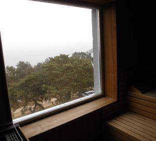 Blick aus der Panoramasauna Strandhotel Heringsdorf