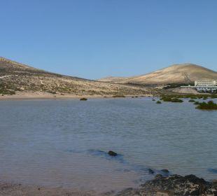 Lagunenblick bei Flut