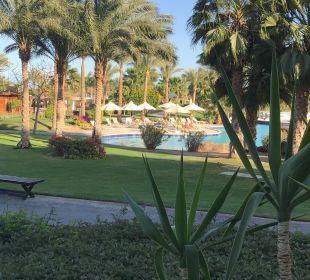 Zimmerausblick Steigenberger Al Dau Beach Hotel
