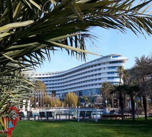 Pool mit Hotel Hotel Concorde De Luxe Resort