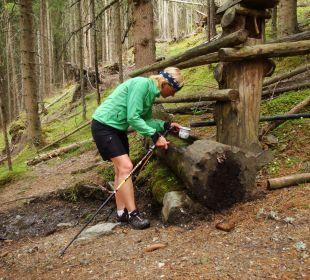 60 Trinkwasserbrunnen im Tal der Quellen Gästehaus Luggau