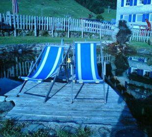 Der Schwimmteich - herrlich! Gasthof Schwabenhof