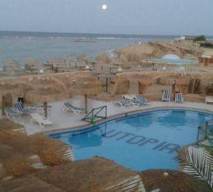 Blick auf pool in strandnähe Hotel Utopia Beach Club