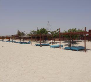 Turtle Beach Resort Hotel Turtle Beach Resort