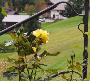 Schöner Garten Der Kleinwalsertaler Rosenhof