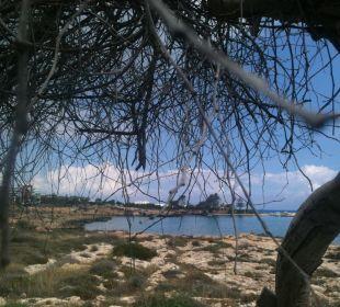 Blick von der Gartenanlage aus Hotel Mimosa Beach
