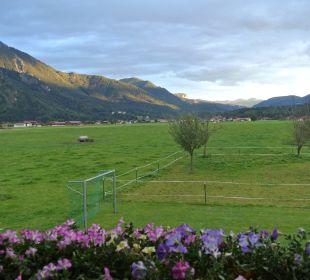 Ausblick vom Balkon-Ferienwohnung Korbinian Bio-Bauernhof Zacherlhof