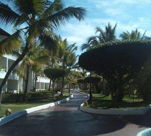 Sauber und gepflegte Anlage Occidental Punta Cana