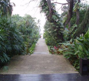 Hauptgang zum Strand Sea Sand Sun Resort