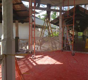 Gartenanlage IBEROSTAR Hotel Punta Cana