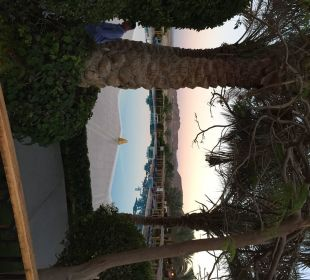 Blick von der Lobbyterasse TUI MAGIC LIFE Kalawy