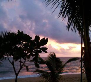 Abendblick am strand La Flora Resort & Spa