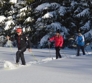 Winterwandern Querfeldein mit Langlaufski Hotel Fischer am See