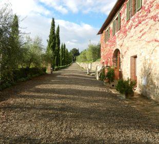 Eingangsallee mit Cantina Hotel & Wine Resort Villa Dievole