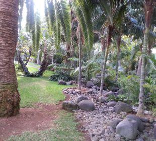 Im Botanischen Garten  Hotel Hacienda San Jorge