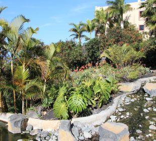 Gepflegte Anlage La Palma Princess