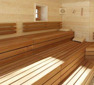 Bio-Dampf Sauna Waldblick Hotel Kniebis
