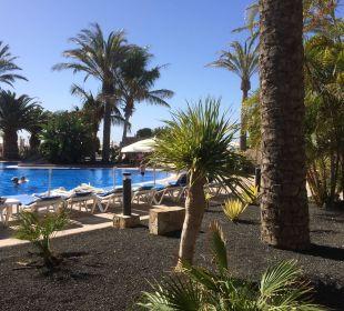 Blick auf den Poolbereich IBEROSTAR Hotel Playa Gaviotas