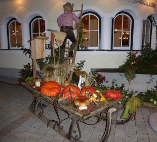 Herbstdekoration Edelweiss Grossarl - Der Stern in den Alpen