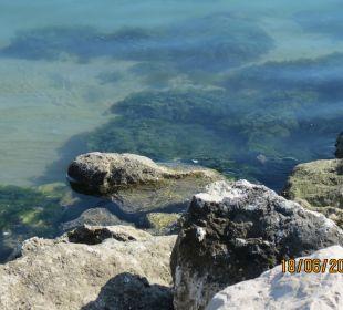 Super sauberes Wasser  Hotel Palos