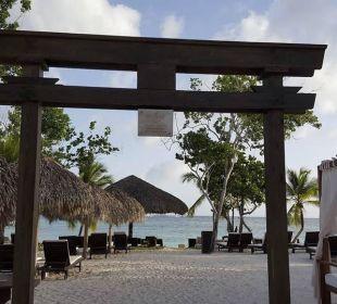 Eingang zum Strand Preferred Club Adults Only Dreams La Romana Resort & Spa