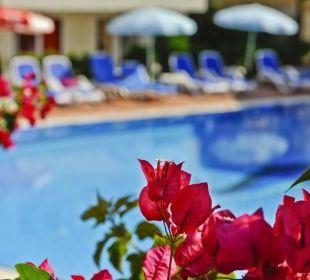 Pool Blok Irem Garden Hotel Family Club