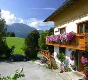 Pension im Sommer Pension Alpenblick