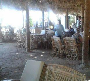 Strandrestaurant super  Hotel Utopia Beach Club