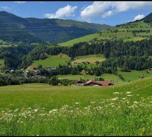 Ausblick auf Gries im Pinzgau Pension Wiesfleck