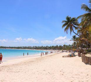 Feinster Sandstrand VIK Hotel Cayena Beach Club
