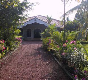 Einfahrt der Bougain Villa Bougain Villa