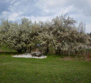 Lauschiges Plätzchen Naturhof Hojoutz