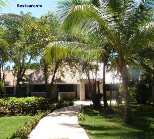 Der Garten zum Restaurant COOEE at Grand Paradise Samana