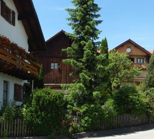 Haus Anny Schall Haus Anny Schall