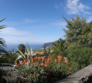 Garten Bungalows El Paradiso