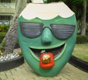Tolle Spaß Hotel Vista Sol Punta Cana