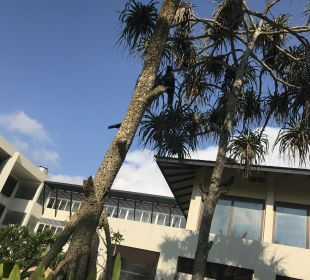 Hotelbilder: Centara Ceysands Resort & Spa Sri Lanka