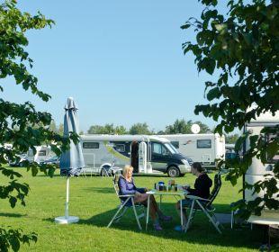 Stellplatz Alfsee Ferien- und Erholungspark - Ferienhäuser