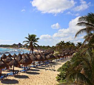 C 21 Tulum Hotelbilder Grand Bahia Principe Tulum in Akumal/Riviera Maya ...