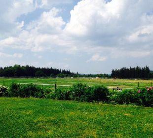 Ausblick vom Zimmer Reit- & Sporthotel Eibenstock
