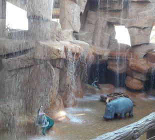 Wasserfall Jungle Aqua Park