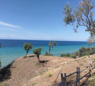 Ausblick Ikos Oceania