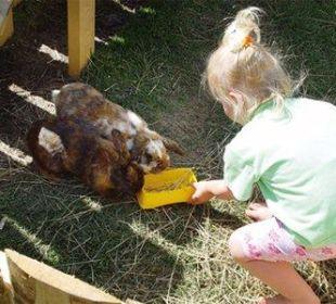 Tiere zum Anfassen! Ferienhof Streidl
